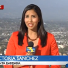 Santa Barbara Police Chief's daughter gets special treatment. Ex-local TV anchor picked up by uniformed patrol officer at LAX after crash
